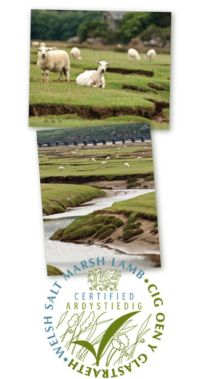 Welsh salt marsh lamb